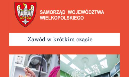 Oferta edukacyjna WSCKZiU w Wielkopolsce